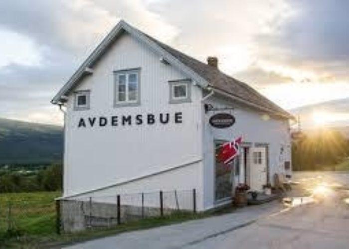 Avdemsbue & Avdem Gardsysteri